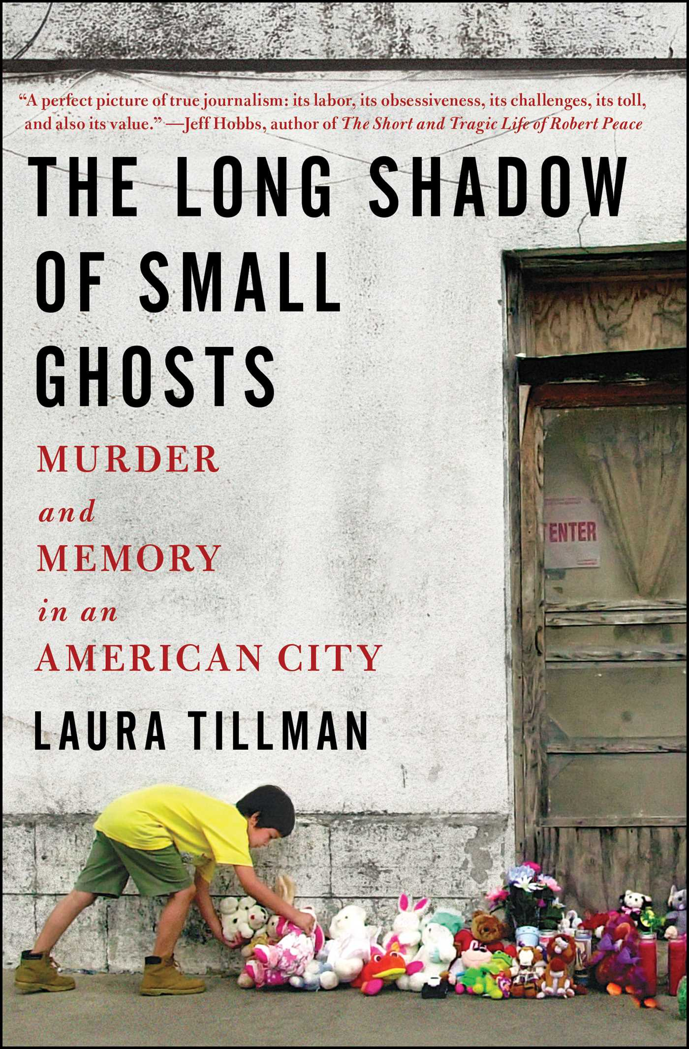 A Small Shadow for Small Ghosts by Laura Tillman