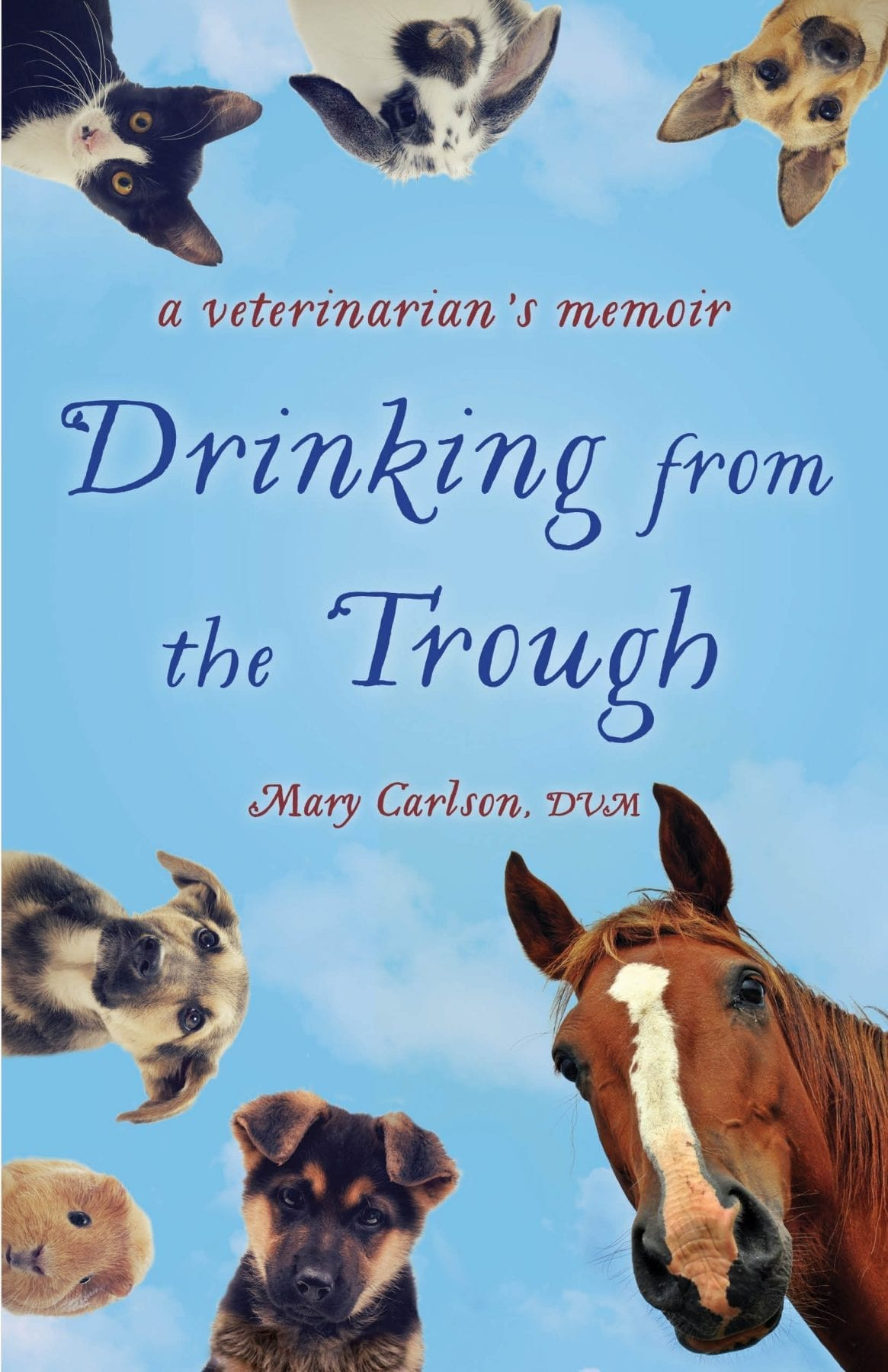 Drinking from the Trough by Mary Carlson, DVM