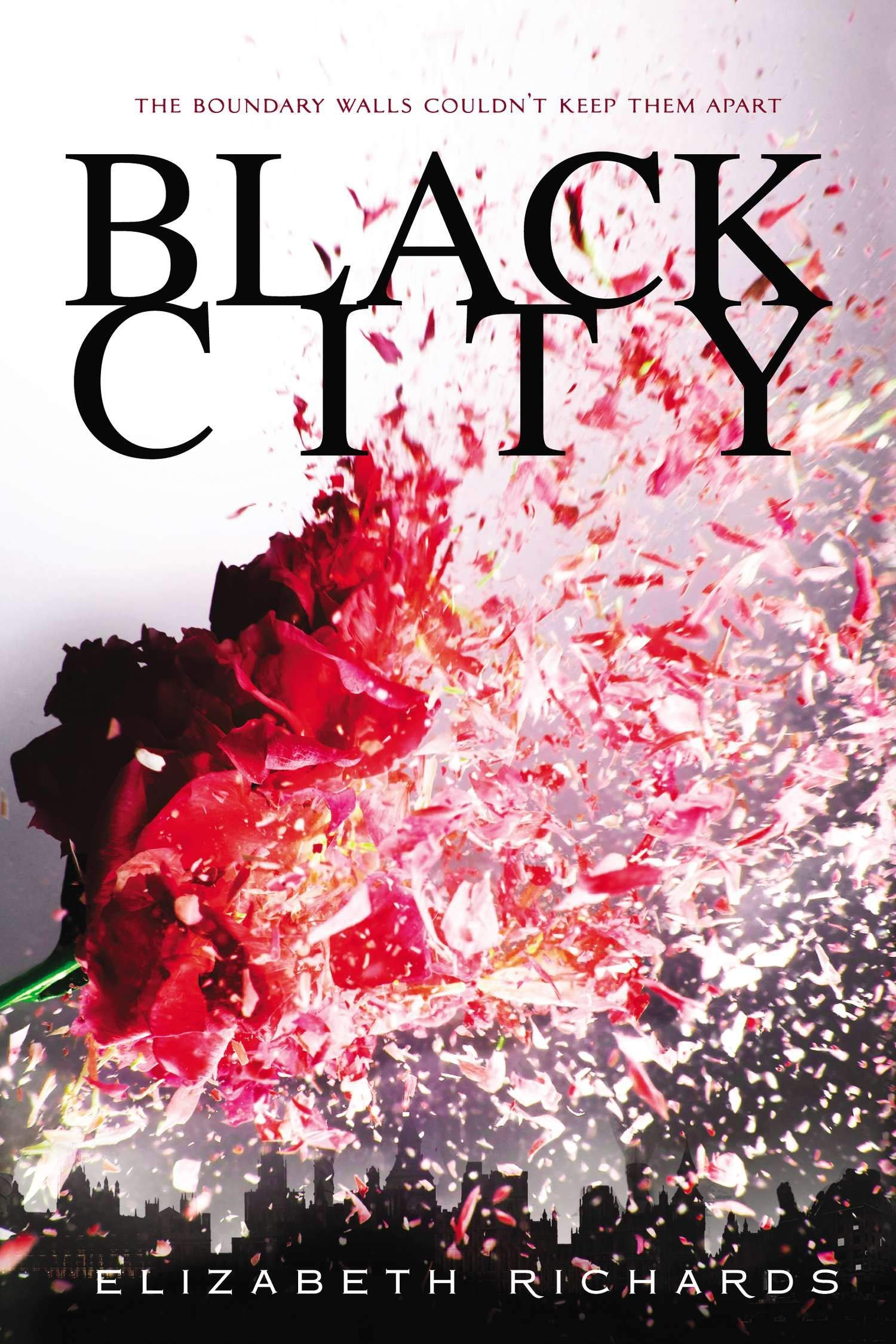 Books like Twilight - Black City