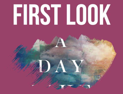 First look: A Day Like This by Kelley McNeil